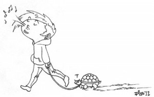 Walking a Turtle