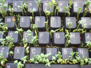 """Keyboard and Cress"" from wetwebwork on Flickr. This photos is Creative Commons licensed."